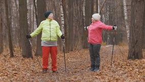 A mulher idosa em fazer do parque do outono aquece-se antes do nordic que anda entre as folhas amarelas Foto de Stock