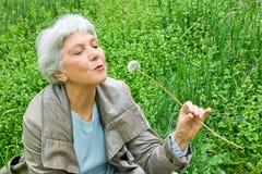 Mulher idosa feliz que senta-se em um prado que funde em um dente-de-leão Foto de Stock Royalty Free