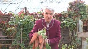 A mulher idosa mostra as cenouras acima crescidas video estoque