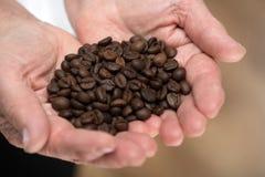 Mulher idosa que guarda feijões de café Foto de Stock Royalty Free