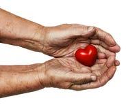 Mulher idosa que mantém o coração vermelho em suas palmas fotografia de stock