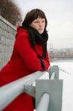 Mulher-inverno Imagens de Stock