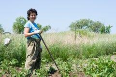 Mulher-jardineiro Foto de Stock Royalty Free