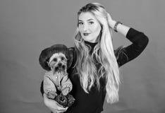 A mulher leva o yorkshire terrier Certifique-se que o c?o sente confort?vel na roupa fato e acess?rios Vestindo o c?o para o frio foto de stock royalty free