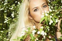 Mulher loura bonita com árvore de maçã. verão Imagens de Stock