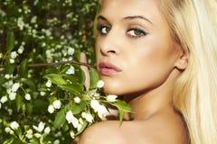 Mulher loura bonita com árvore de maçã. verão Foto de Stock