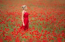 Mulher loura bonita no campo vermelho da papoila imagens de stock royalty free