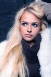 Mulher loura da beleza Fotos de Stock Royalty Free