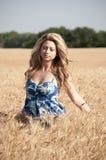 Mulher loura e um campo de trigo Fotos de Stock
