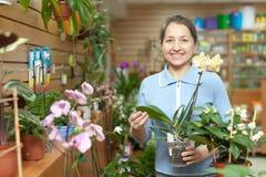 Mulher madura feliz com Phalaenopsis Fotografia de Stock