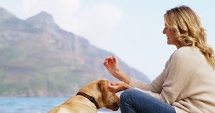 Mulher madura feliz que joga com o cão na praia filme