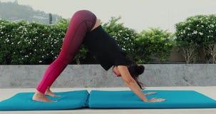 Mulher madura que faz a parte externa em declive do cão da posição da ioga video estoque