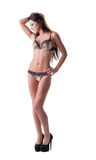 Mulher magro encantador que levanta no roupa interior erótico Fotografia de Stock Royalty Free