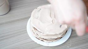 A mulher mancha o bolo de esponja com o creme vídeos de arquivo