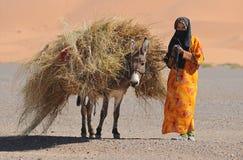 Mulher marroquina fotografia de stock