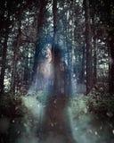 Mulher misteriosa de Ghost com o casaco nas madeiras imagem de stock