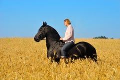 A mulher monta o cavalo no campo Fotos de Stock