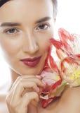 Mulher moreno bonita nova com fim vermelho da amarílis da flor isolada acima no fundo branco Composição extravagante da forma Foto de Stock
