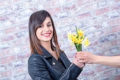A mulher moreno nova oferece narcisos amarelos Imagens de Stock Royalty Free