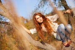 Mulher na árvore - Autumn Lifestyle Fotografia de Stock Royalty Free