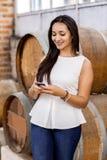 Mulher na adega de vinho Foto de Stock Royalty Free