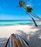 Mulher na cama do sol sob a palmeira na ilha tropical Foto de Stock Royalty Free