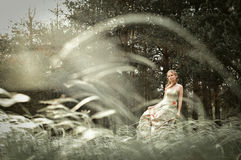 Mulher na floresta feericamente Fotografia de Stock Royalty Free
