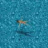 Mulher na piscina, teste padrão sem emenda Foto de Stock Royalty Free
