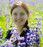 Mulher na planta do lupine selvagem violeta imagens de stock