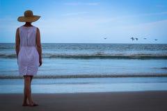 Mulher na praia que olha o oceano com voo dos pássaros fotos de stock royalty free