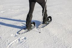 Mulher na roupa morna do inverno que snowshoeing foto de stock royalty free
