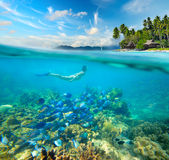 A mulher nada em torno de um recife de corais bonito Foto de Stock