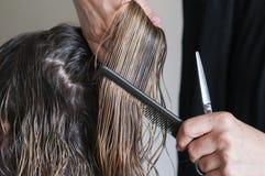 Mulher no cabeleireiro Imagens de Stock Royalty Free