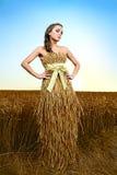 Mulher no campo de trigo fotografia de stock royalty free