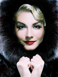 Mulher no casaco de pele do inverno foto de stock royalty free