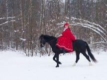 Mulher no hábito de equitação vermelho fotografia de stock