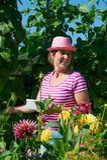 Mulher no jardim vegetal Imagens de Stock