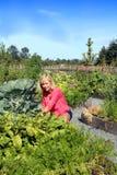 Mulher no jardim vegetal Fotografia de Stock