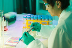 Mulher no laboratório da microbiologia foto de stock royalty free