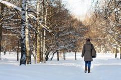 Mulher no parque do inverno Foto de Stock