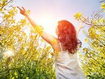 Mulher no vestido branco que está para trás com mãos levantadas no campo de flores amarelo fotografia de stock royalty free
