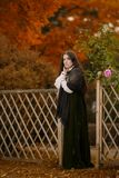 Mulher no vestido do Victorian fotos de stock royalty free