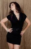 Mulher no vestido e na jóia imagens de stock