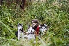 A mulher no vestido vermelho com árvore wolfs, floresta, mistério p dos cães do cão de puxar trenós Fotografia de Stock Royalty Free