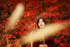 Mulher nova bonita Autumn Portrait Foto de Stock