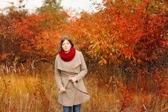 Mulher nova bonita Autumn Portrait Fotos de Stock