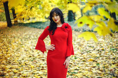 Mulher nova bonita Com profissional compõe, denominação do cabelo Composição brilhante nova acessória luxuosa da cor, batom brilh Fotos de Stock