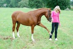 Mulher nova com cavalo Fotos de Stock Royalty Free