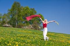 Mulher nova com um lenço vermelho em um prado Fotos de Stock Royalty Free