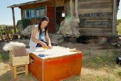 A mulher nova do Mongolian trabalha com feltro fora de uma casa em Harhorin, Mongólia Fotografia de Stock